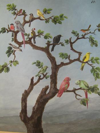 Неизвестный художник первой трети ХІХ в. Птицы на ветке. Бумага, гуашь